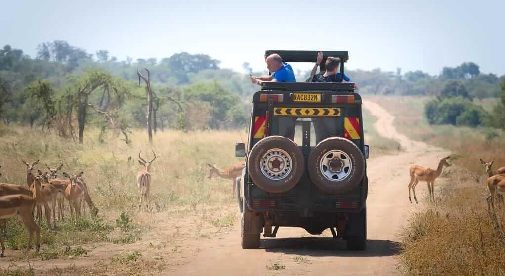 Long Day Rwanda Safaris