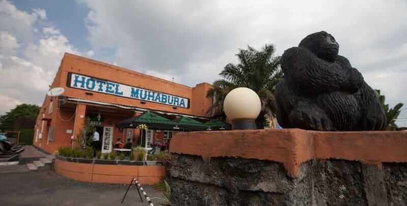 Top Safari Lodges For Gorilla Trekking In Rwanda