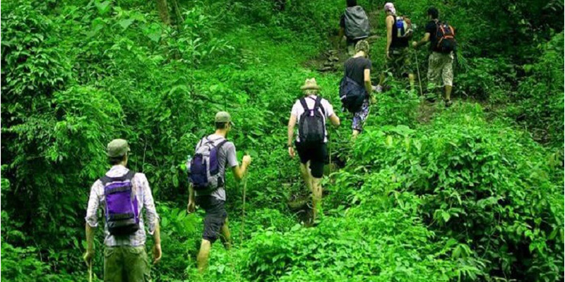 Practices To Get Physically Fit For Gorilla Trekking